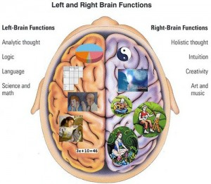 Right brain web designers versus left brain SEO consultants