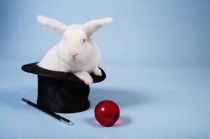 live-rabbit-hat